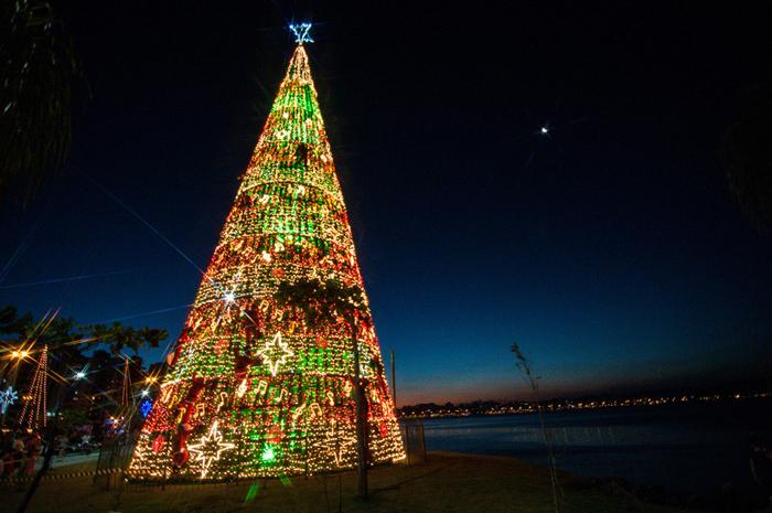 <p>A árvore de Natal de Florianópolis (SC) decora a orla da capital e tem 30 m de altura e 35 mil lâmpadas</p>