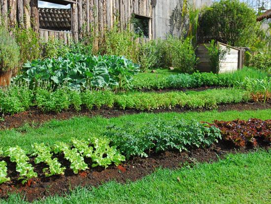 A Fazenda - Conhe?a as depend?ncias da Fazenda - Rede Record