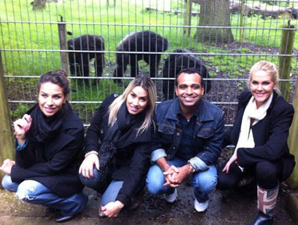 No Zoológico de Londres, a turma ficou bem pertinho dos chimpanzés